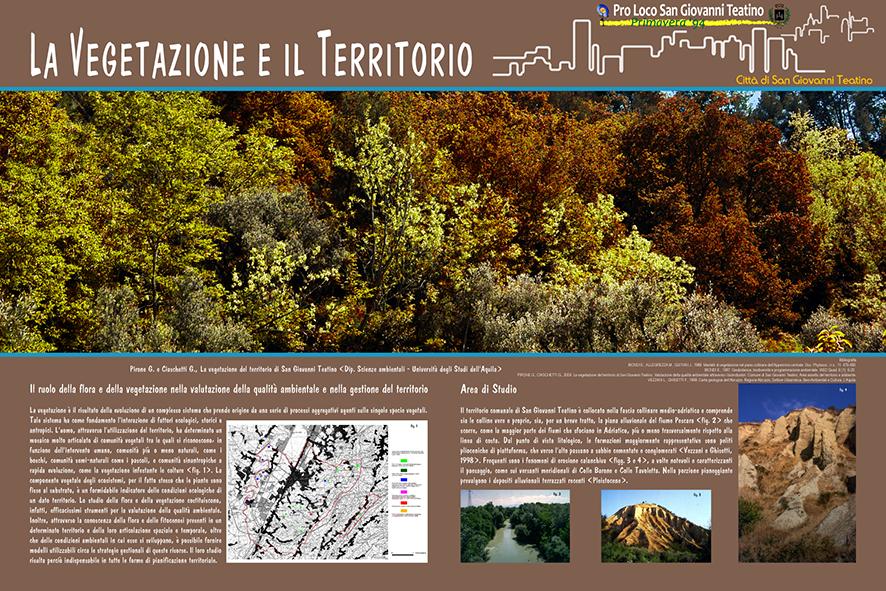 Il ruolo della flora e della vegetazione